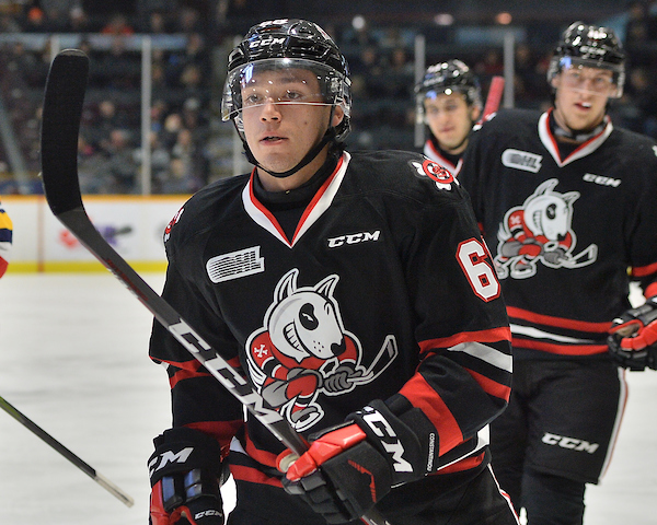 Billy Constantinou of the Niagara IceDogs. Photo by Terry Wilson / OHL Images.