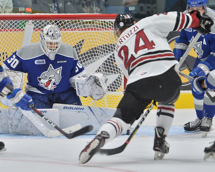Tag Bertuzzi of the Guelph Storm. Photo by Terry Wilson / OHL Images.